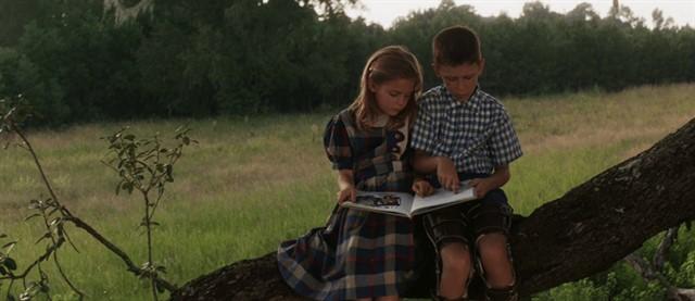 Forrest Gump'da engelli bir çocuğun hikayesi birçok detayla birlikte işlenmiştir.